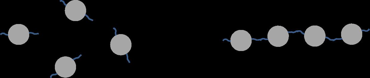 Monomeren aan elkaar knopen tot een polymeer
