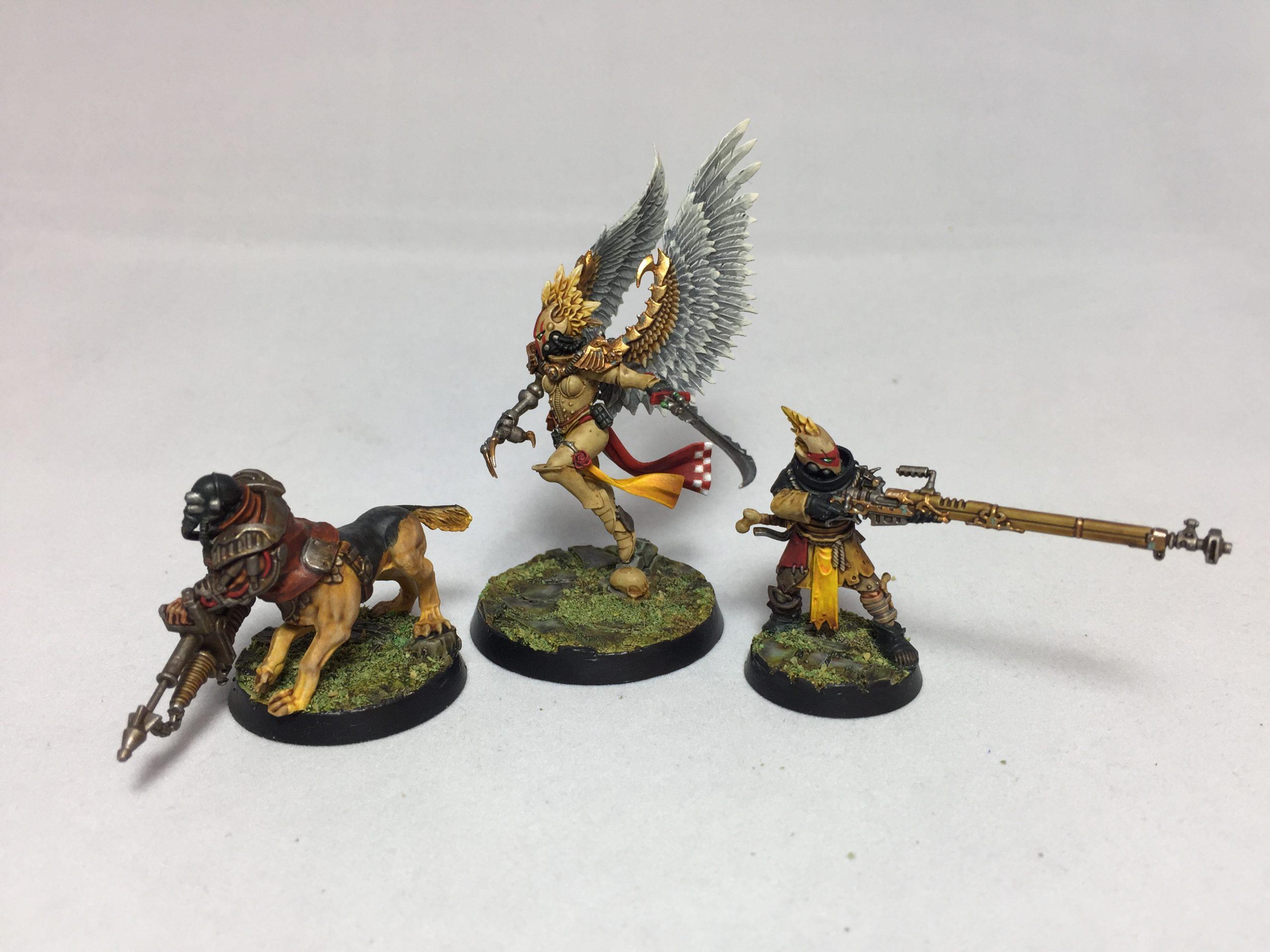 The Hawk and the Huntsman